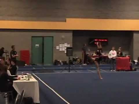 daggetts gymnastics meet 2013 nba