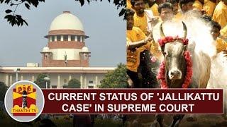 Current Status of 'Jallikattu Case' in Supreme Court – DETAILED REPORT