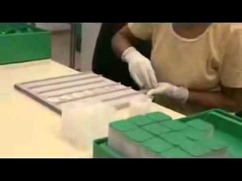 how its made  American Eagle Silver Bullion Coins