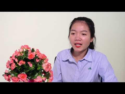 Cty Thức Ăn Chăn Nuôi Hà Nội Feed 4 k co logo
