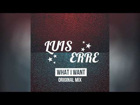 Luis Erre - What I Need (Original Mix)
