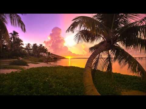 Wilf Enighma- La vie est belle