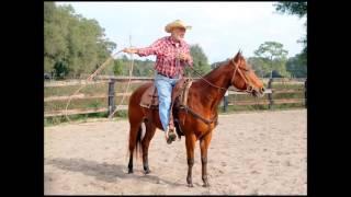 FLYING W HORSES