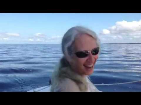 AMF Minifish Sailing