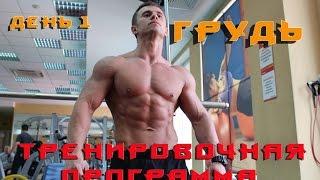 Как накачать грудь ? Супер тренировка груди. Натуральный бодибилдинг(В этом видео я покажу как накачать грудь. Это тренировка грудных мышц для обычного парня. Не супер атлета!..., 2015-07-20T17:09:38.000Z)