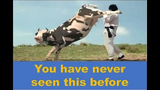 Kung fu cow | Kung fu Movie in HD | Aminal Fight with Human