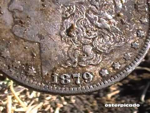 My Best Find: A Morgan Silver Dollar!!