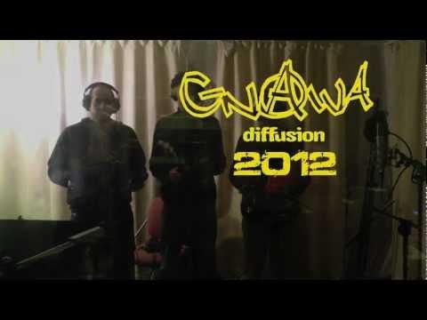 gnawa diffusion 2012 new album