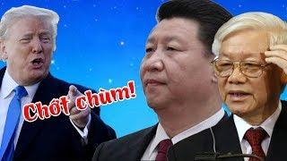 Tin cực vui: Mỹ đã cắt đứt động mạch chủ của Trung Quốc, Ba Đình hoảng loạn vì sụp theo