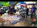 4K Walking around the Chatuchak Fish Market, Bangkok
