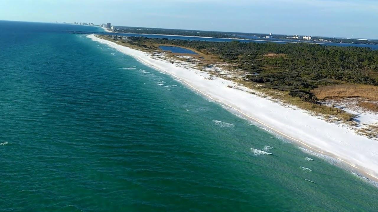 Shell Island Sharks Panama City Beach