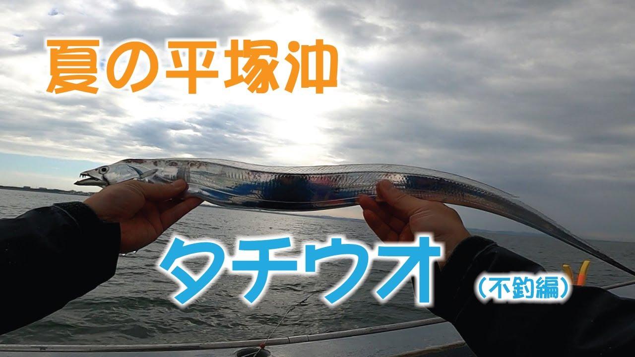 夏の平塚沖 タチウオ (不釣編)