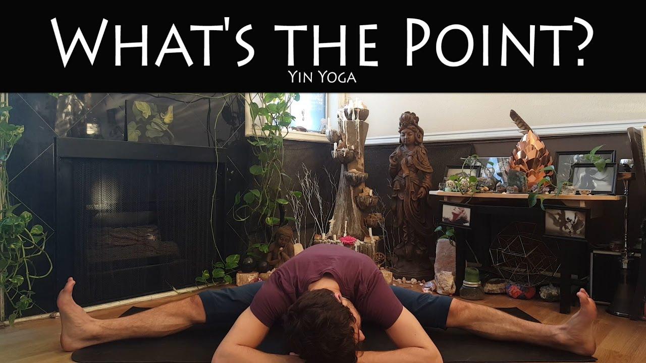 Yin Yoga | Purposeless | Taha Yoga w/ Stephen Beitler