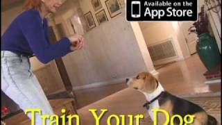 Train Your Dog - The Positive Gentle Method - Dvd & Iphone App Trailer