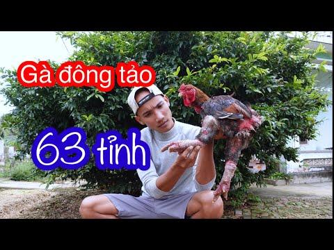 Chân Gà Đông Tảo , Lẩu Mắm , Mắt Cá Ngừ Đại Dương , Khô Cá Lóc - Ẩm Thực 63 Tỉnh   Son Duoc Vlogs