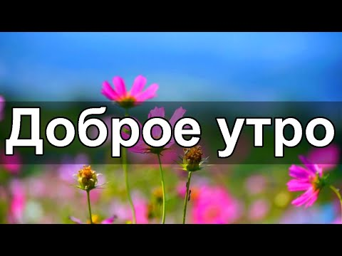 С ДОБРЫМ УТРОМ, ХОРОШЕГО ВАМ ДНЯ! Красивая Видео Открытка с Добрым Утром