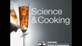 Reinventing Food Texture & Flavor | Lecture 6 (2010)