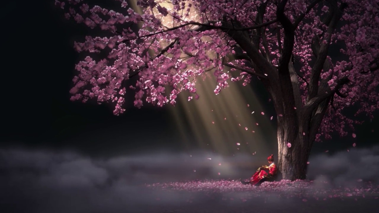 Sakura Falling Live Wallpaper Iphone Sakura Drop Animated Wallpaper 60fps 1080p 3 Youtube