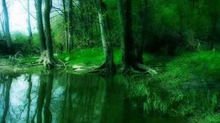 Forever In Love (instrumental Rock).avi