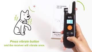 How to Use DogCare Dog Training Collar TC01