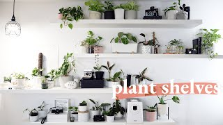 Installing my Plant Shelves (funny fails!)   Plant Room Makeover Part 2