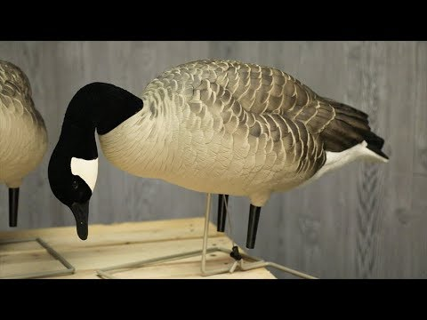 Avian X Full Body Canada Decoys