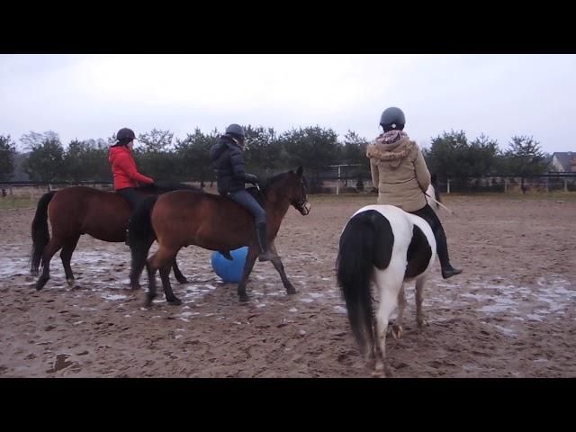 Mecz piłkarski na koniach :))