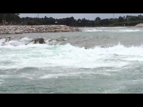 Bow river weir boneheads almost die