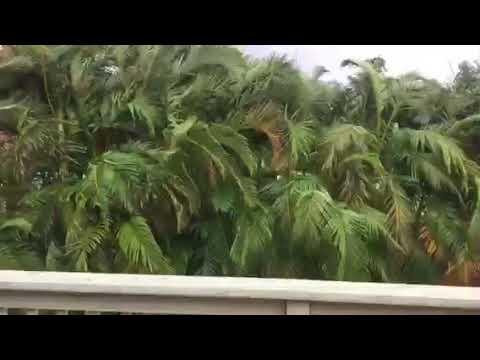 Maui winds