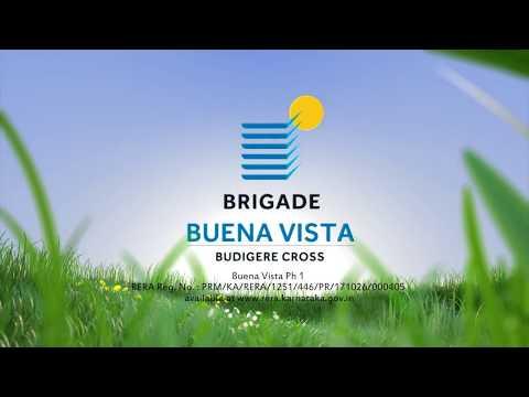 Walkthrough To Brigade Buena Vista