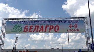 Белагро 2019 / Международная специализированная выставка (Минск)