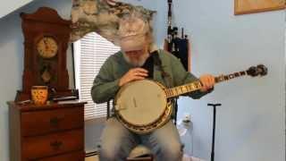 Washburn B-120 Banjo Review