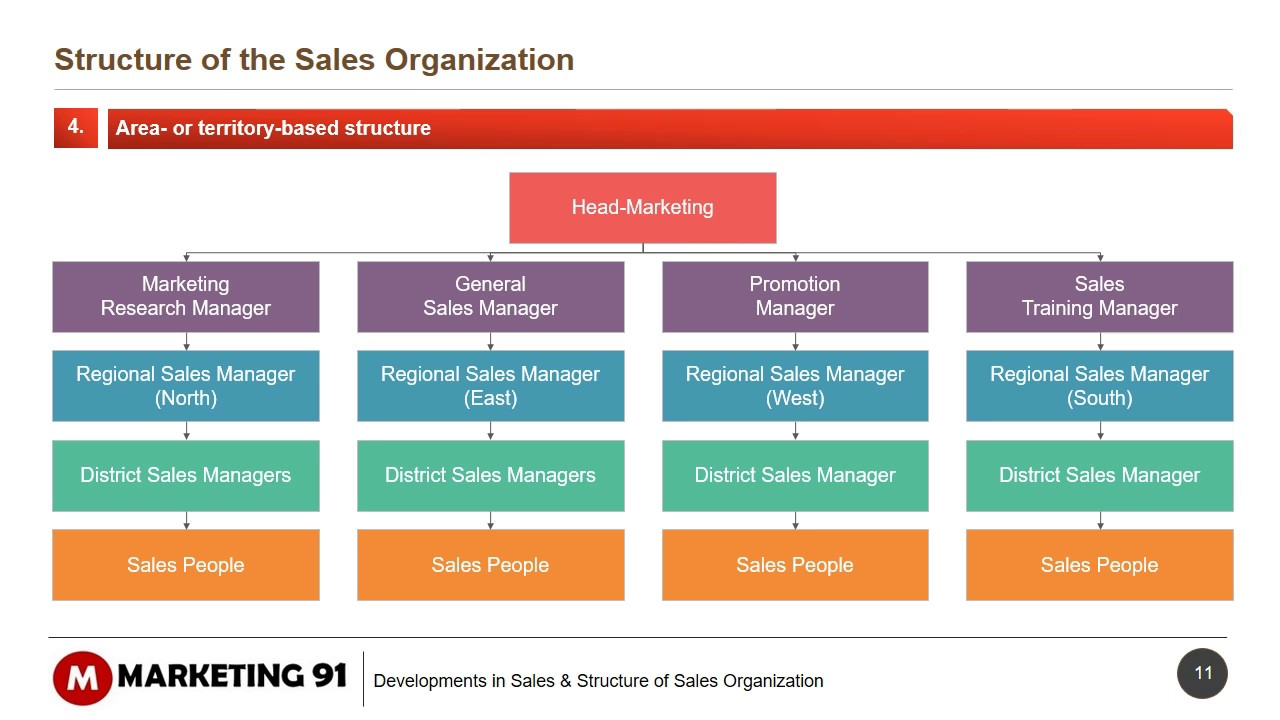 Structure Of Sales Organization Sales Organization