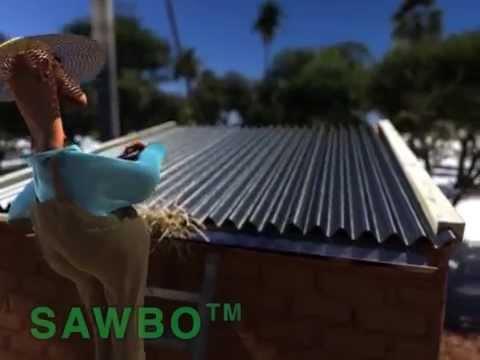 SAWBO - Dengue Prevention: Variant for Tonga