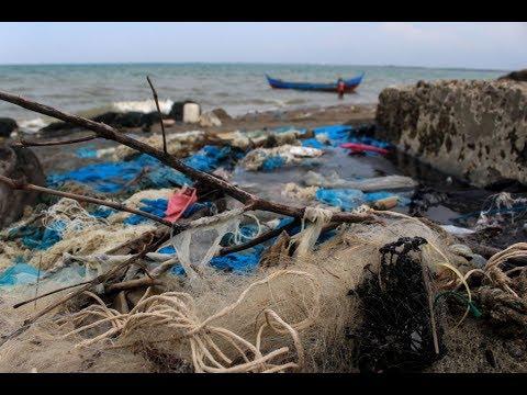 أكبر ملوثي العالم يتحدون لتنظيف المحيطات  - نشر قبل 6 ساعة