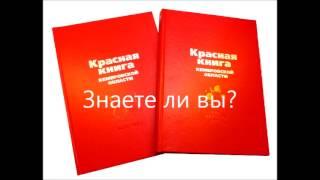 """Читаем книгу """"Мир Животных"""" Красные книги"""