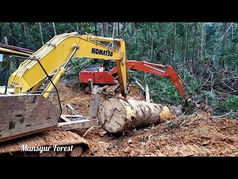 Duet Dua Unit Excavator Hitachi Zaxis 210 F dan Kumatsu PC 200 Angkat Kayu Dari Tepi Jurang