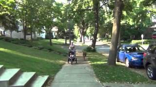 Taylorsville Georgia Consumer Credit Counseling call 1-888-551…
