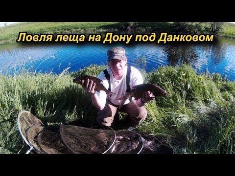 Ловля леща на Дону под Данковом