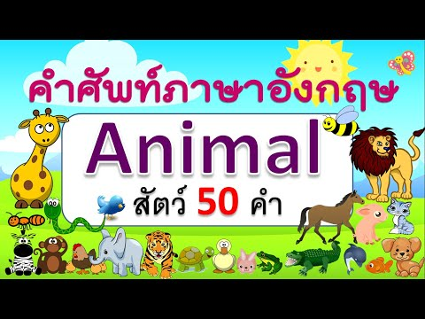 คำศัพท์ภาษาอังกฤษสัตว์ 50 ชนิด   Animals   Learn and song