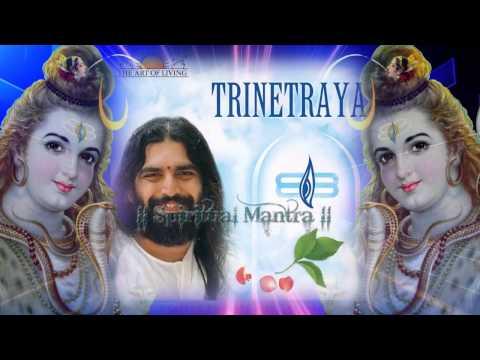 Parameshwaraya Shashishekharaya - Rishi Nitya Pragya - Art of Living Bhajan - Om Namah Shivaya