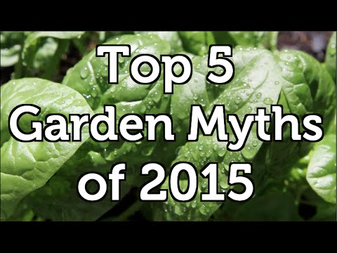 The Top 5 Garden Myths.  Advice that is not Correct and Why!