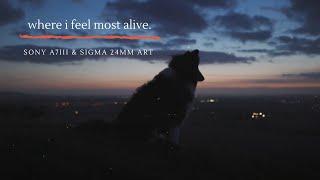 where i feel most alive.   Sony A7III & Sigma 24mm Art 
