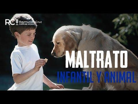 ¡MALTRATO EN NIÑOS Y ANIMALES!