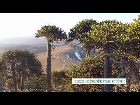 THEMES Project  [EN] : understanding climate change in the subtropics