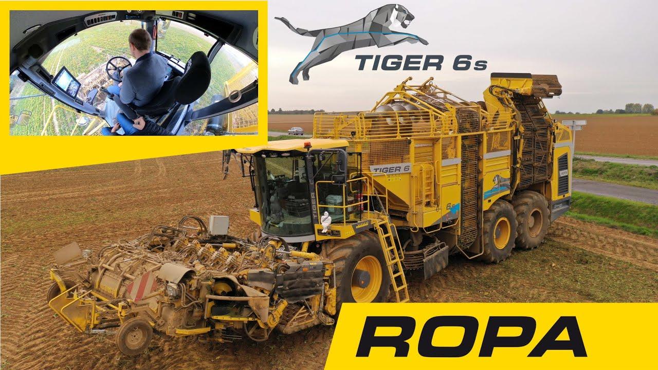 Download ROPA TIGER 6 S 2020 Arrachage de Betterave dans l'Eure en Drone