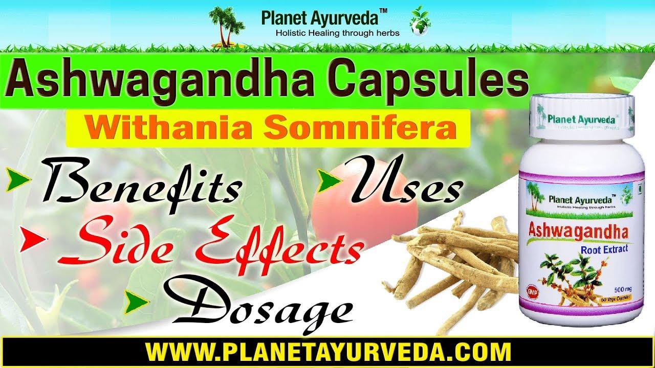 Ashwagandha Extract Dosage