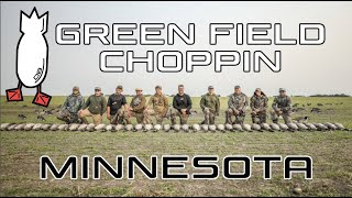 September Minnesota Honker Madness
