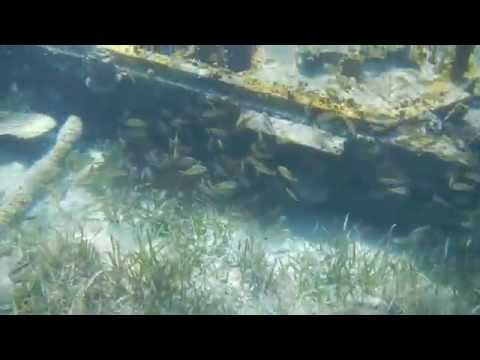 Sandy Cay Boat Wreck - A Dynamic Look at One Interesting Sunken Vessel