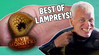 Best of Lampreys - River Monsters